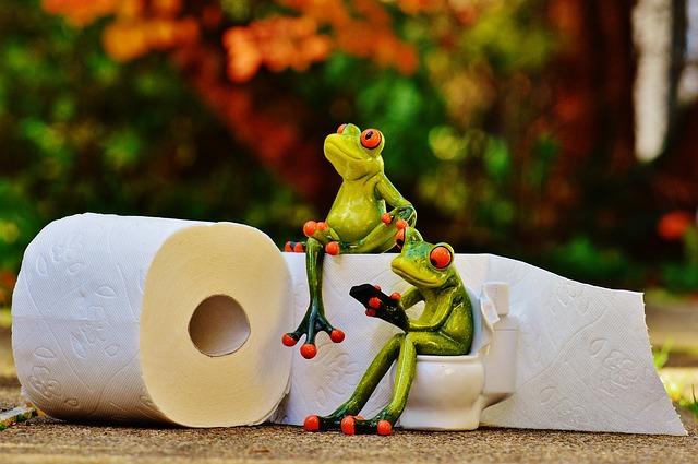 トイレトレーニングはいつからした方がいいの?やり方や必要な物は?