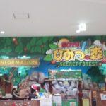 モラージュ菖蒲の「ひみつの森」は、室内でも楽しく元気に遊べる場所です!【有料】