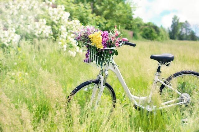 野原の中にある自転車