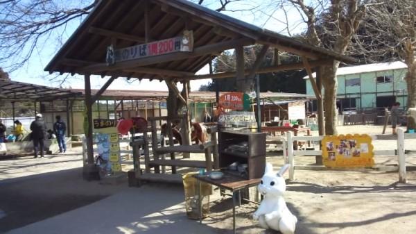 宇都宮動物園の乗馬コーナー