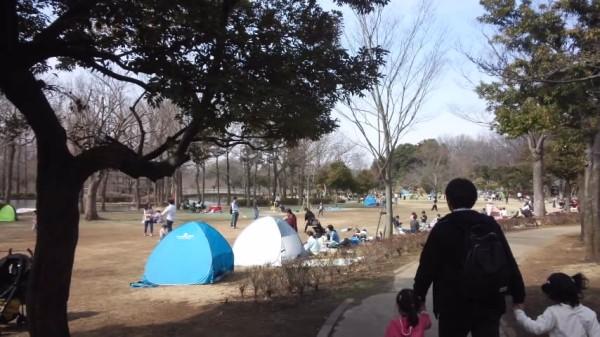 上尾丸山公園の芝生広場