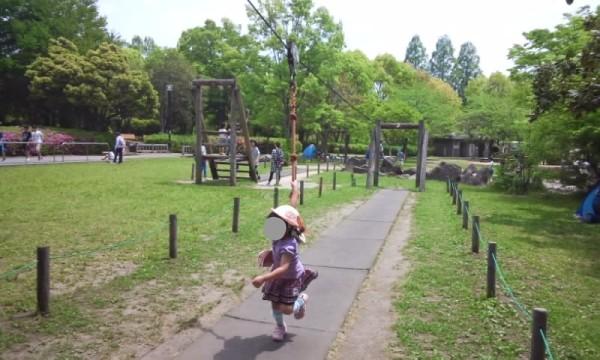 庄和総合公園のターザンロープ