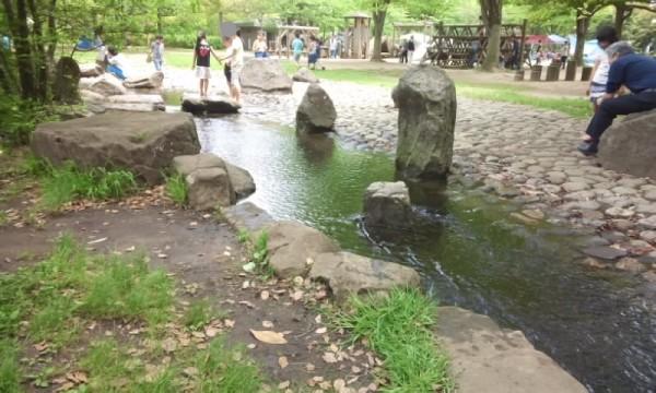 庄和総合公園の小川