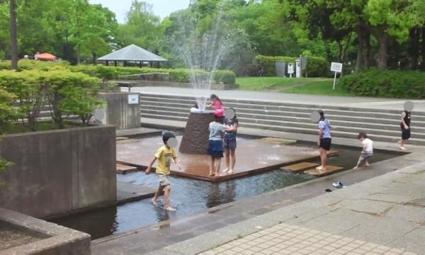 庄和総合公園の噴水広場