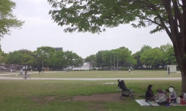 庄和総合公園の芝生広場