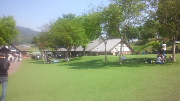 川場田園プラザの人工芝