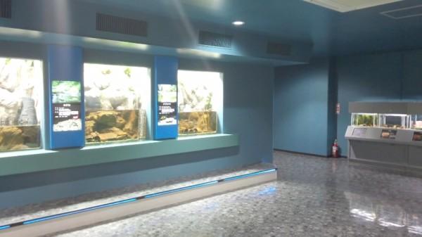 さいたま水族館の館内