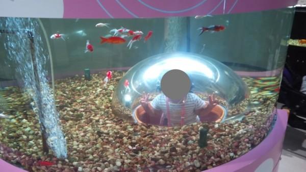 さいたま水族館のおもしろ水槽