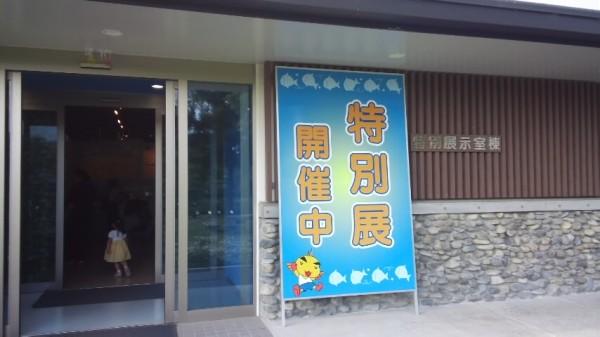 さいたま水族館の特別展