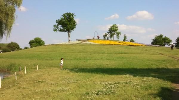 キヤッセ羽生の四季の丘