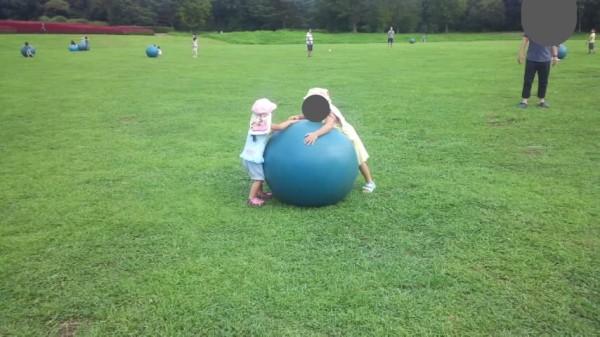 モリ森ボールの大きいボールで遊ぶ子供たち