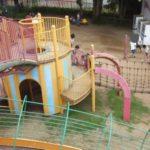 国営武蔵丘陵森林公園の口コミ!幼児向け遊具と遊び場メインにレビューしてみます。