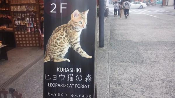 KURASHIKIヒョウ猫の森の看板