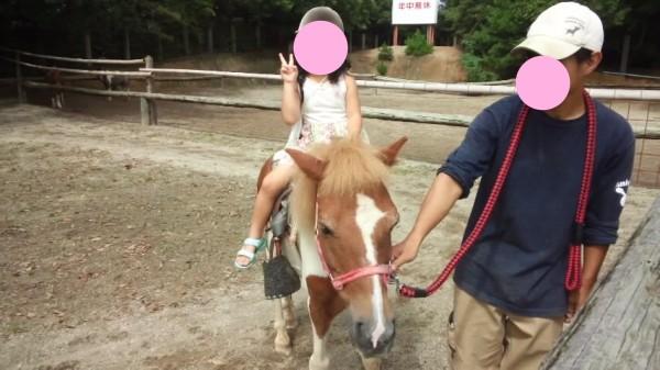 渋川動物公園の乗馬体験