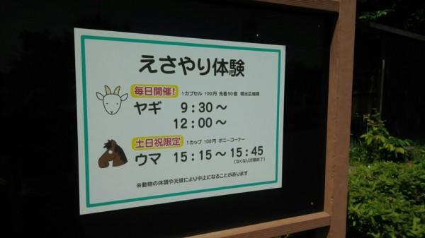埼玉県東松山市こども動物自然公園 餌やり