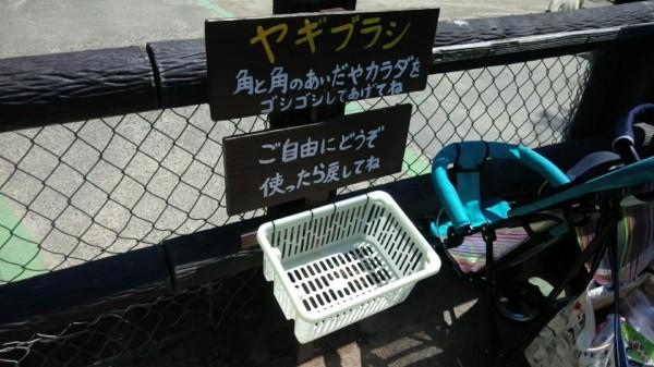 埼玉県東松山市こども動物自然公園 ふれあいコーナー
