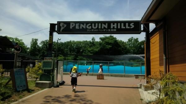 埼玉県東松山市こども動物自然公園 ペンギン
