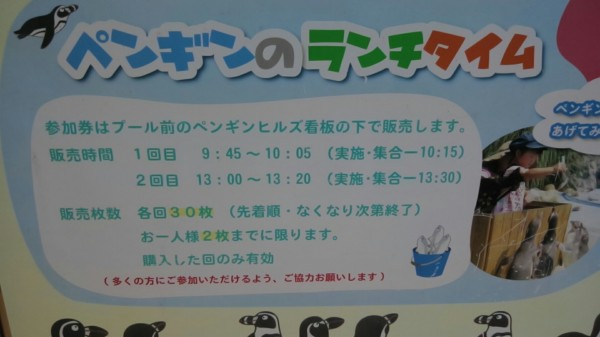 埼玉県東松山市こども動物自然公園 ペンギンランチタイム参加時間