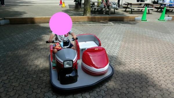 埼玉県東松山市こども動物自然公園 遊具
