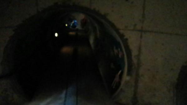 ネーブルパーク 地下迷路